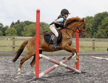 girl schooling her horse