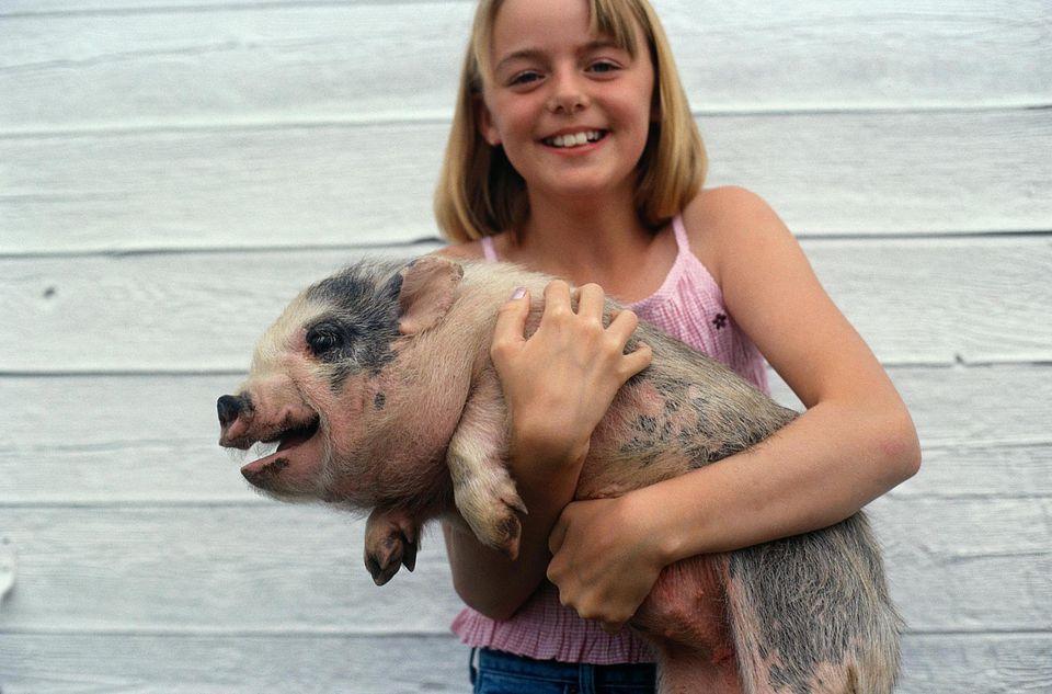 Niña sosteniendo un cerdo barrigón