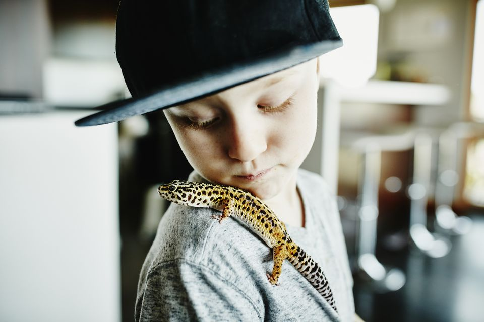 Boy with leopard gecko