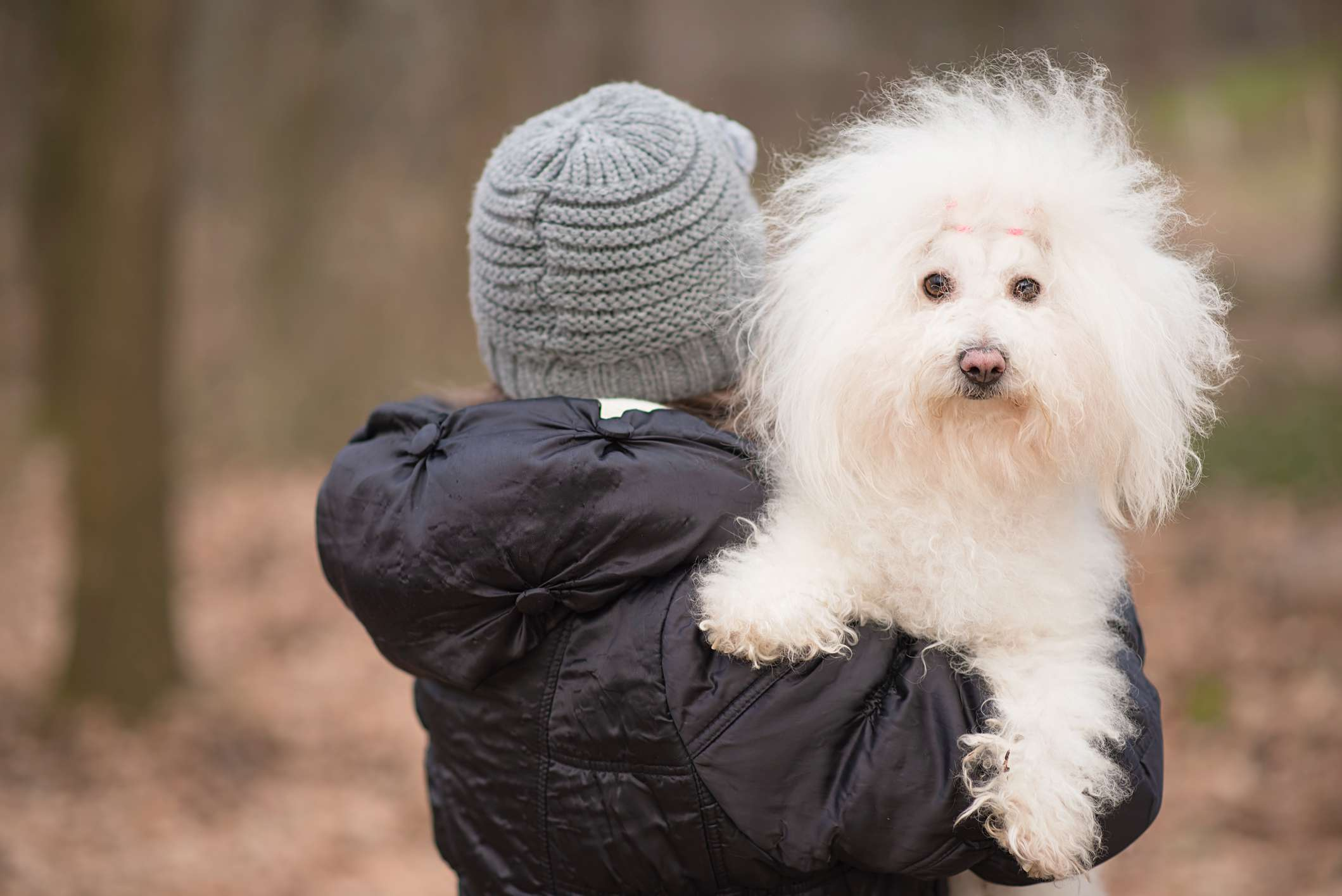 A girl in a beanie and raincoat carrying a fluffy white dog.