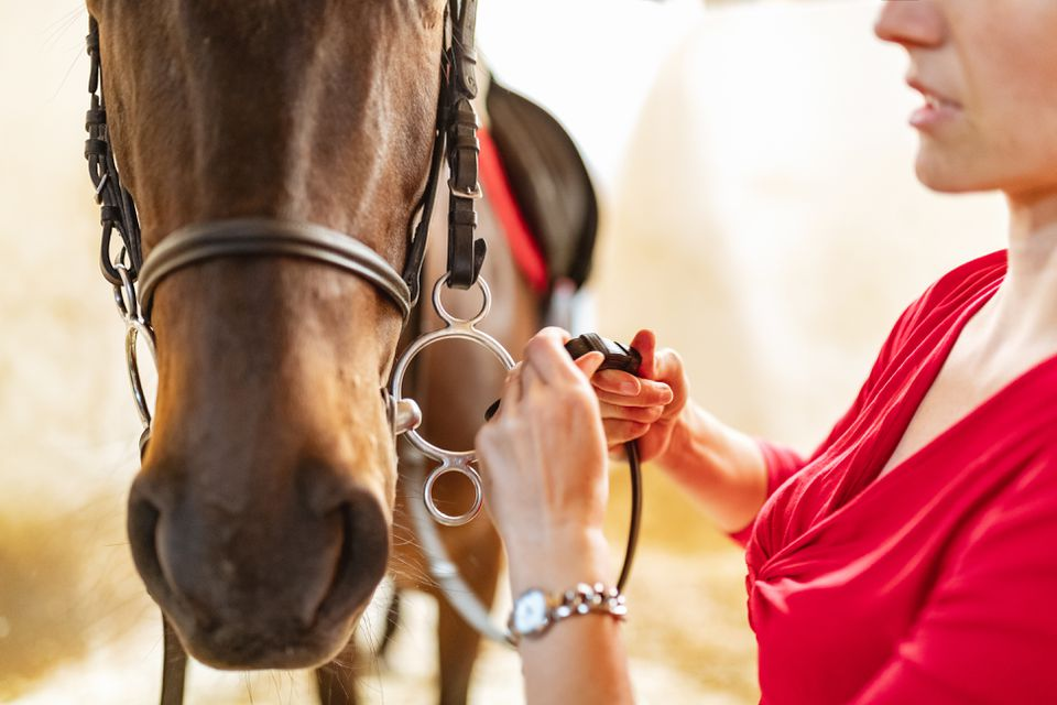 Adjusting reins for horseback riding