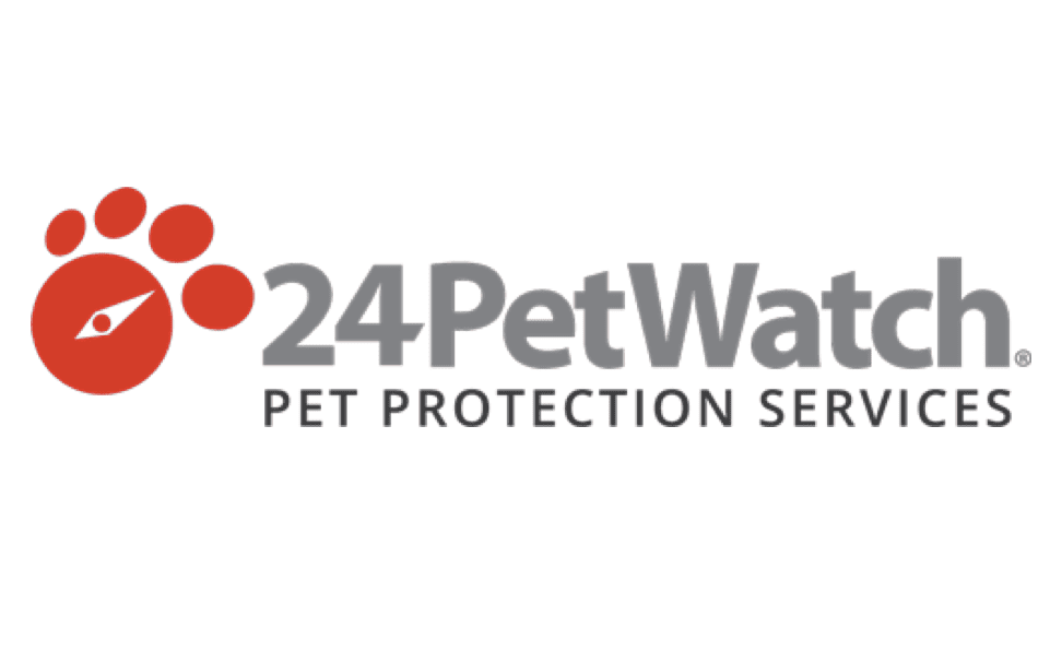 The 9 Best Pet Insurance Policies of 2020