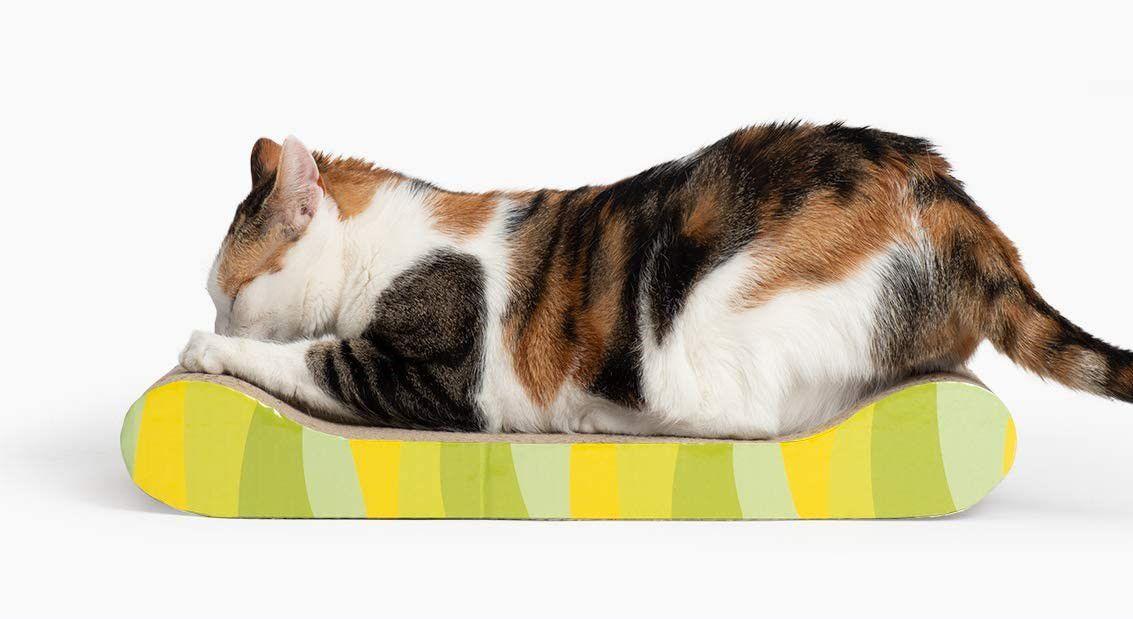 Catit Cat Scratcher Board with Catnip