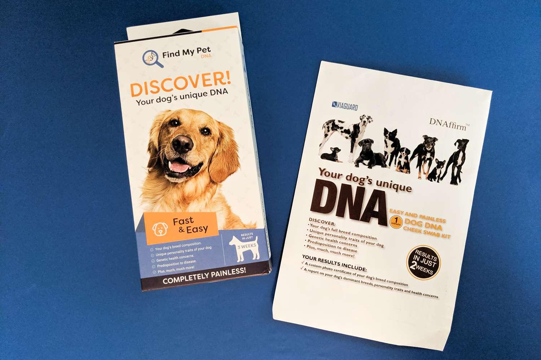DNAffirm Dog Breed DNA Test