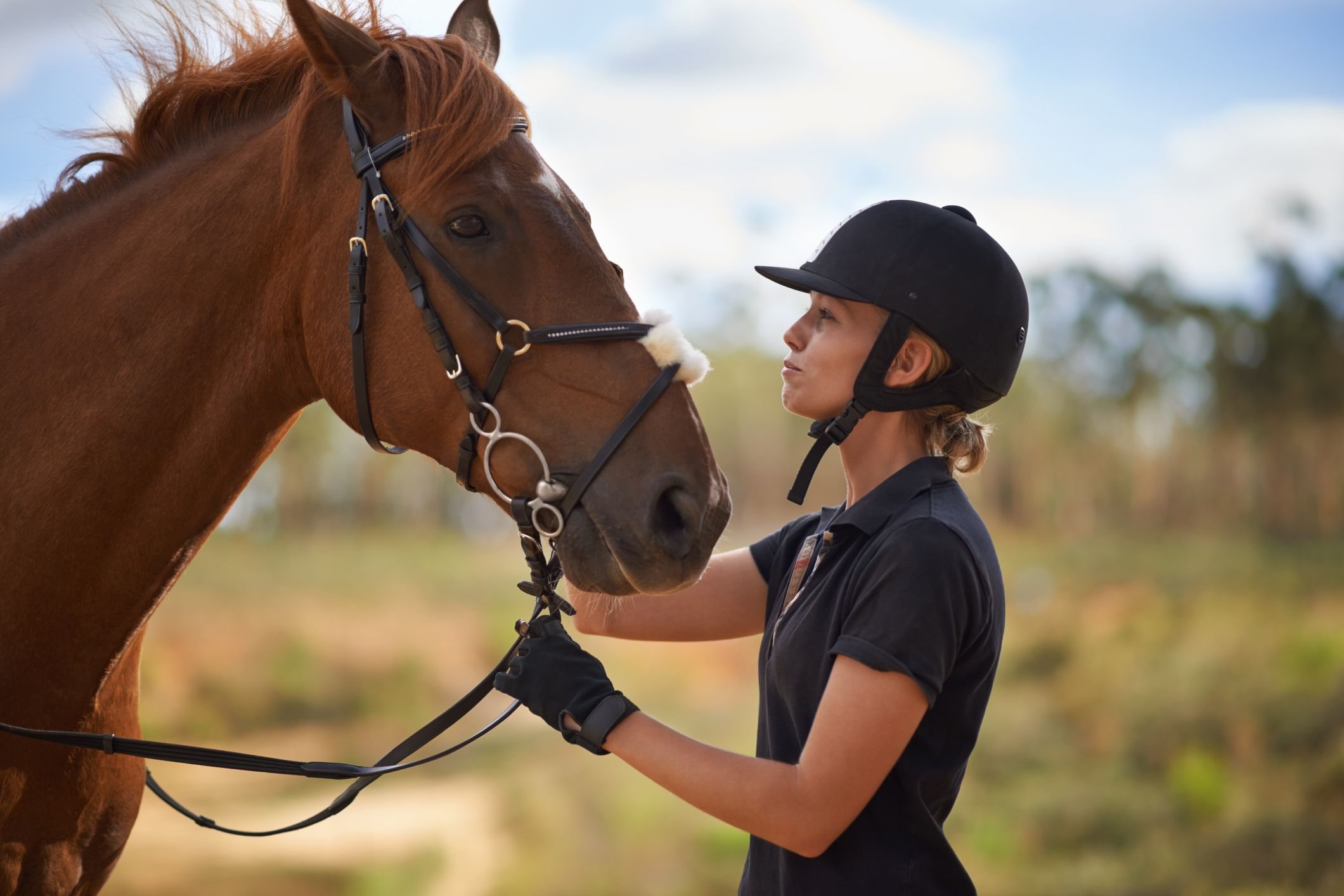 The Best Horse Breeds For First Time Owners And Riders