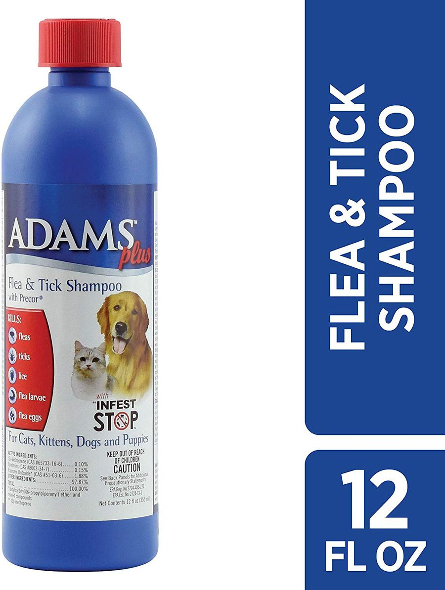 The 8 Best Flea And Tick Prevention Products For Dogs In 2021