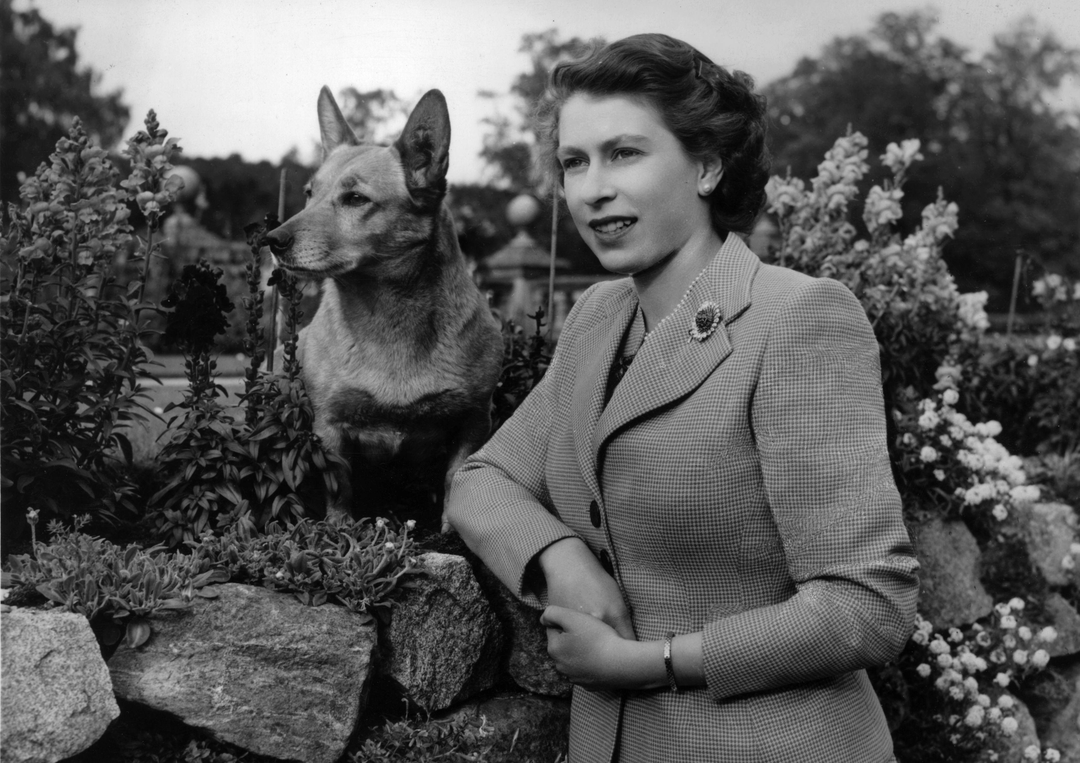 La reina Isabel con uno de sus corgis favoritos.