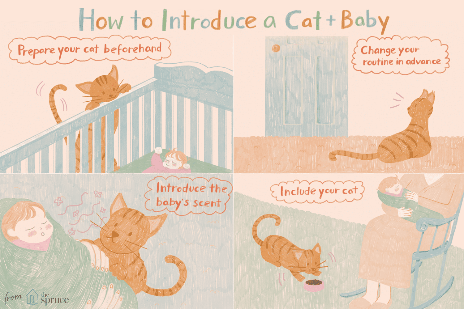 Introducing a cat to a baby illustration