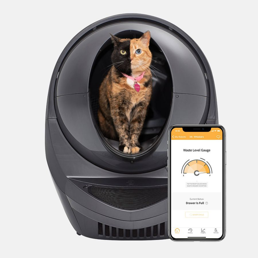 The 8 Best Cat Litter Boxes Of 2020
