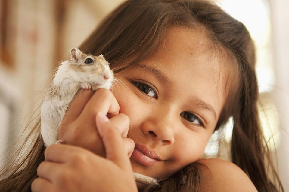 Child holding a pet gerbil
