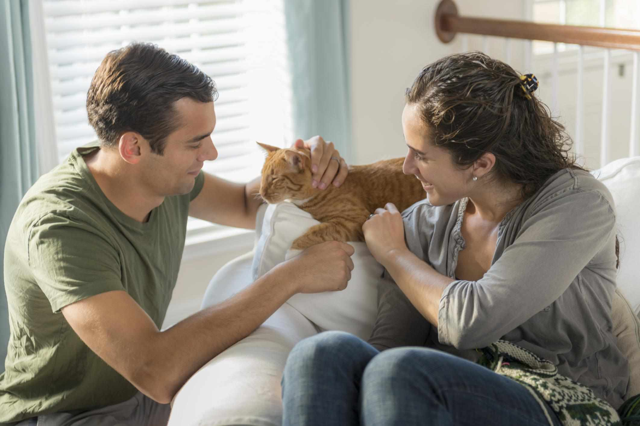 Couple petting orange tabby cat.