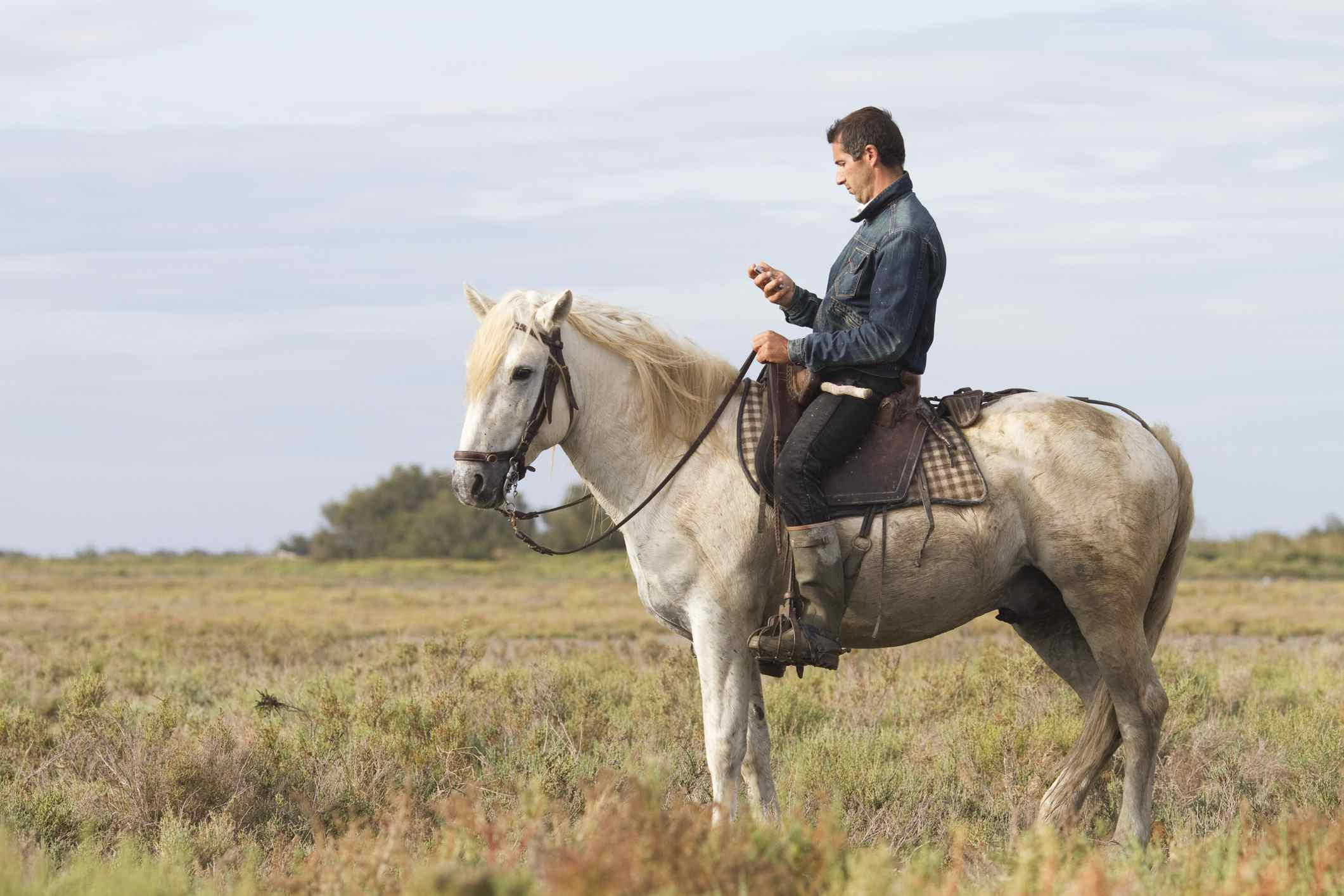 Man looking at his cell phone while sitting on a horse