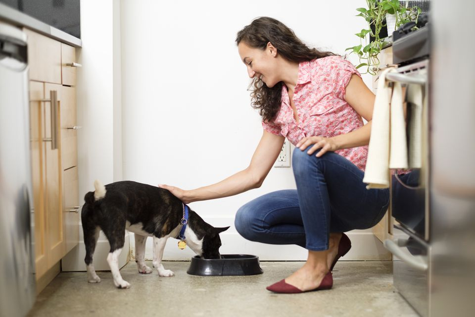 Woman feeding dog in kitchen