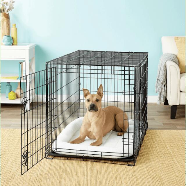Frisco Fold & Carry Dog Crate