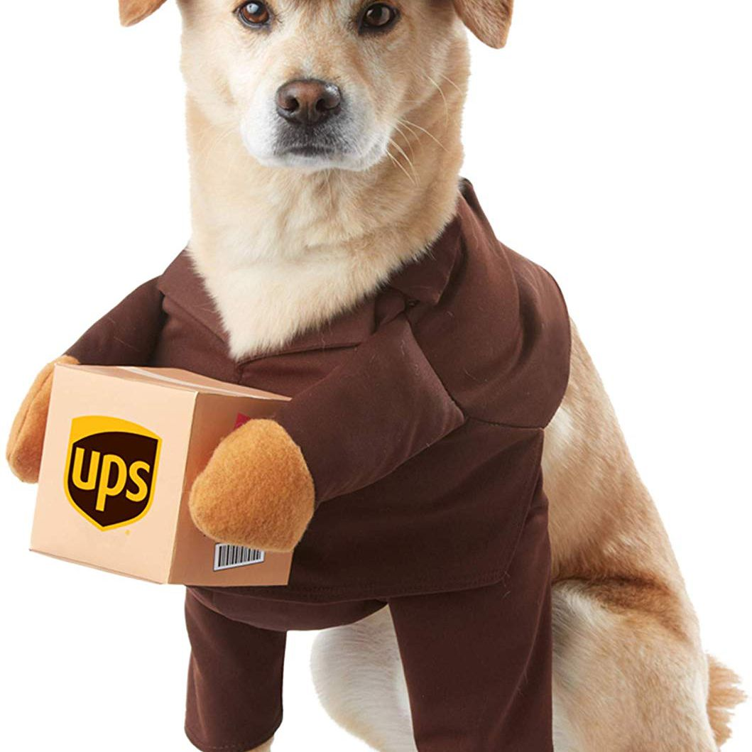 California Costumes UPS Pal Pet Halloween Costume