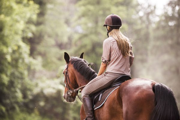 Rear view of female jockey horseback riding.