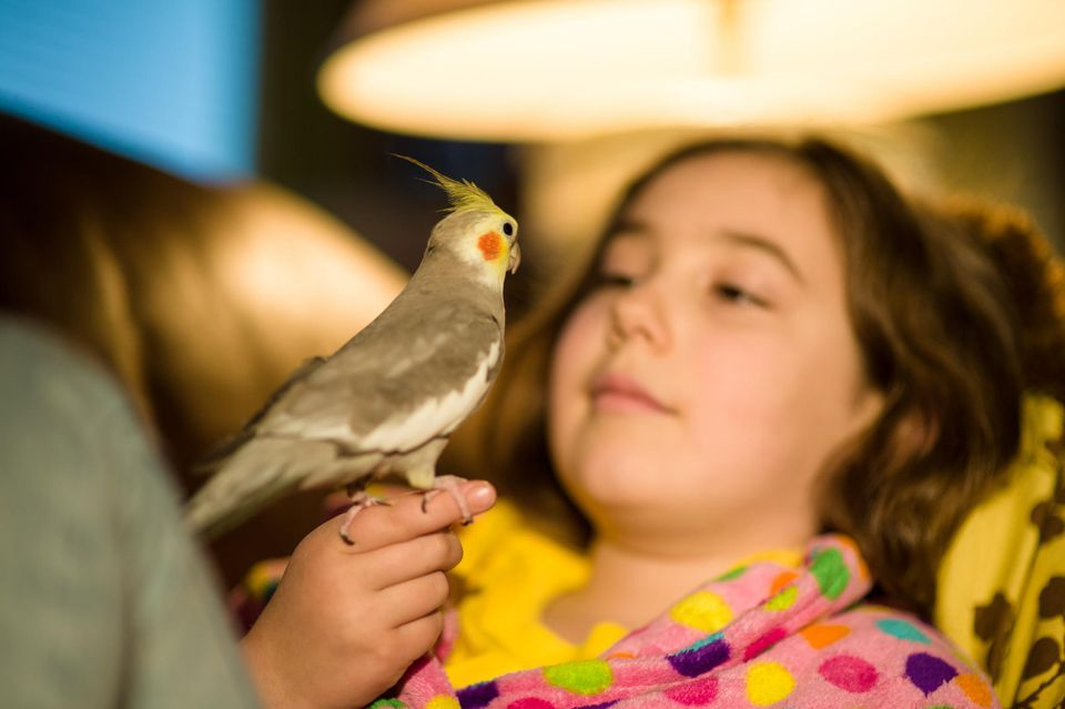 Girl holding cockatiel
