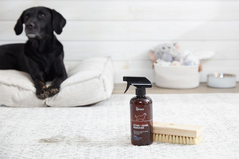 the spruce waterless pet wash with a scrubbing brush and a dog