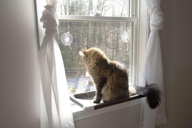 Kitty Cot Original World's Best Cat Perch