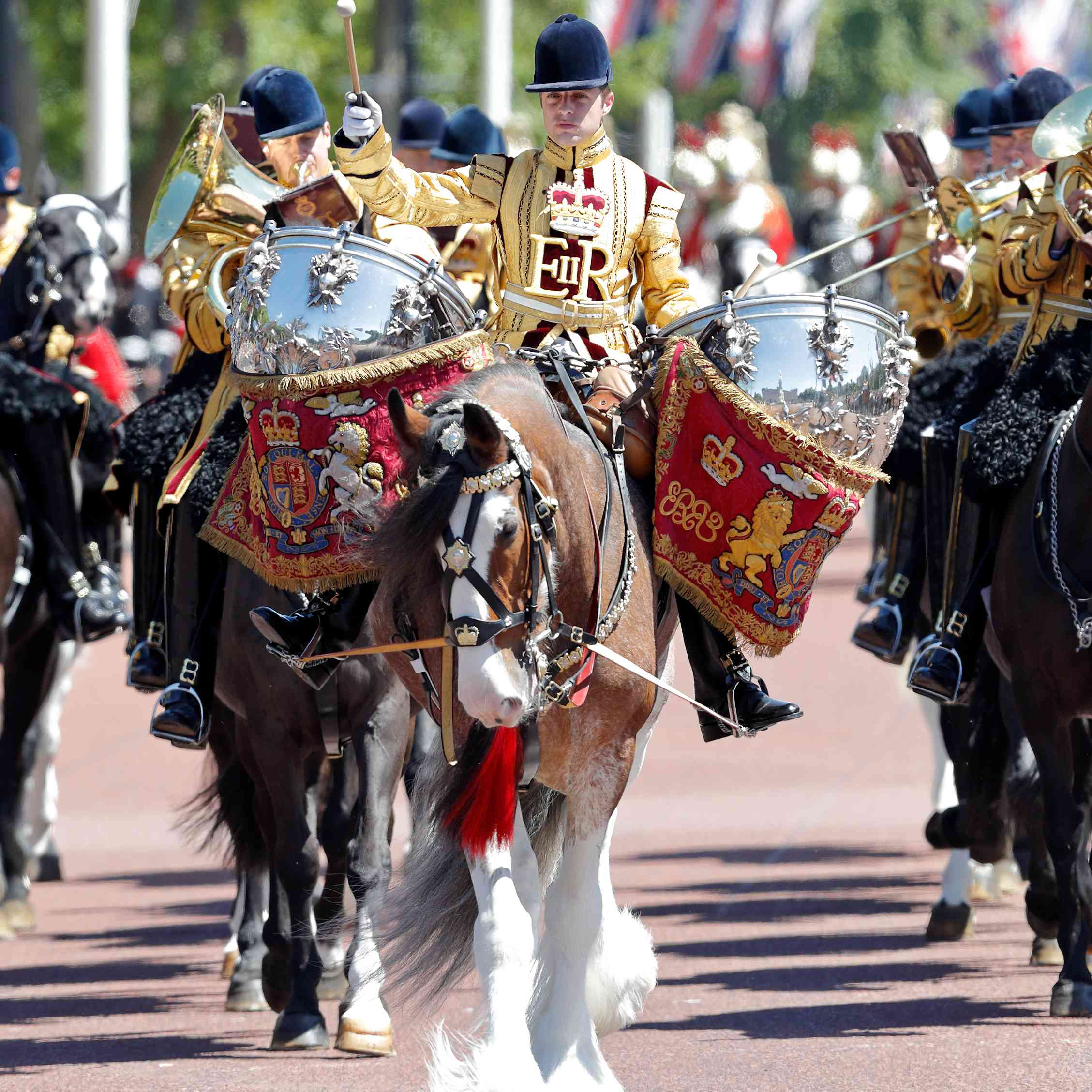 Bay Drum Horse being ridden in a procession in the UK
