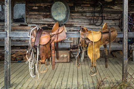 What Western Saddle Seat Size Do I Need?