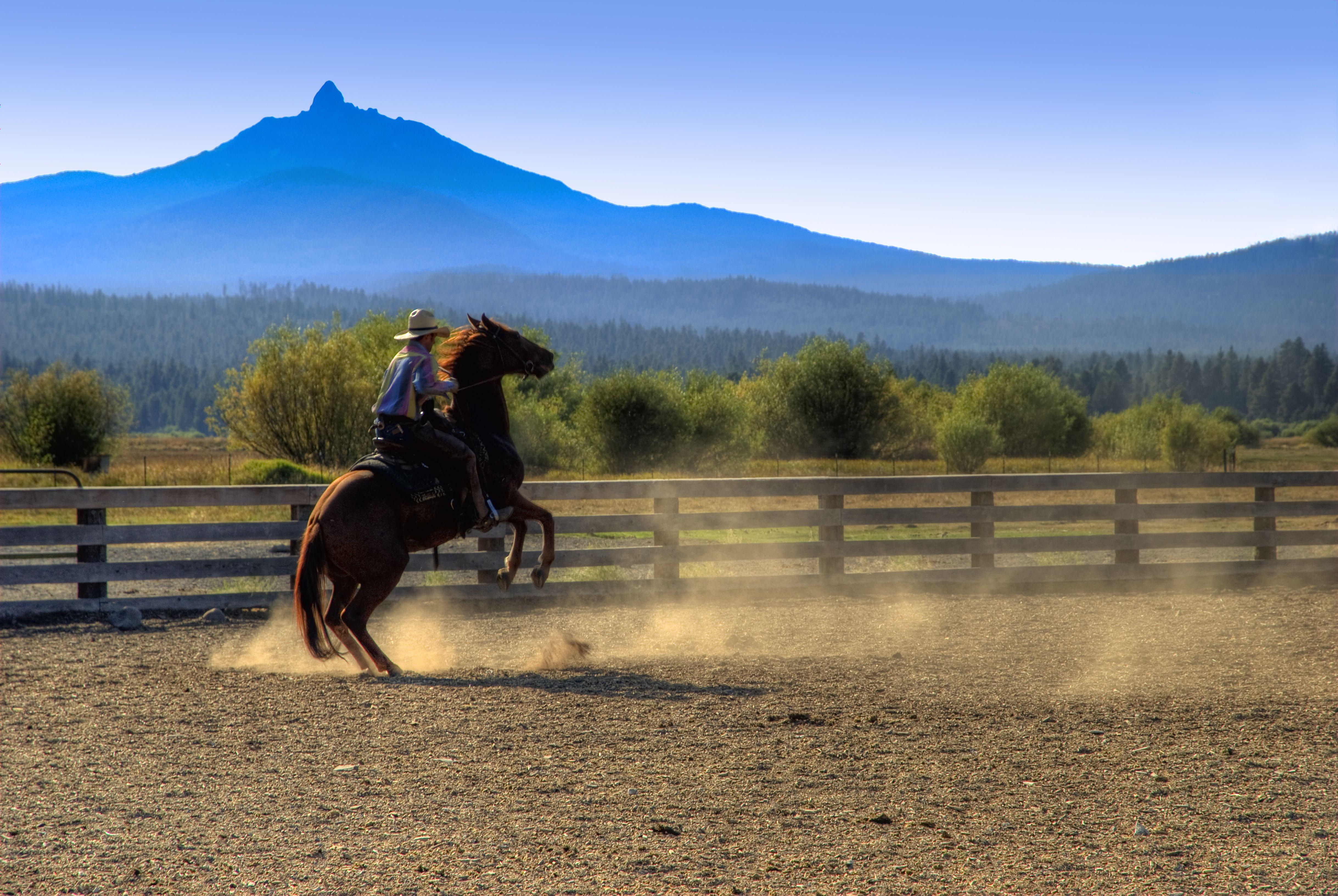 Vaquero montando caballo