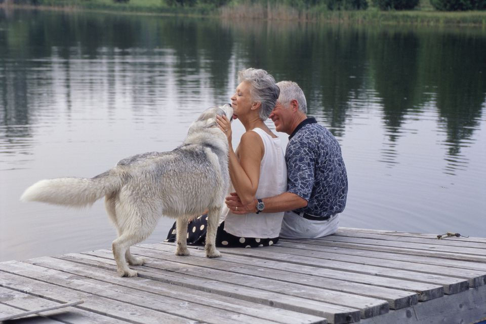 Elderly couple and their dog on a pier.