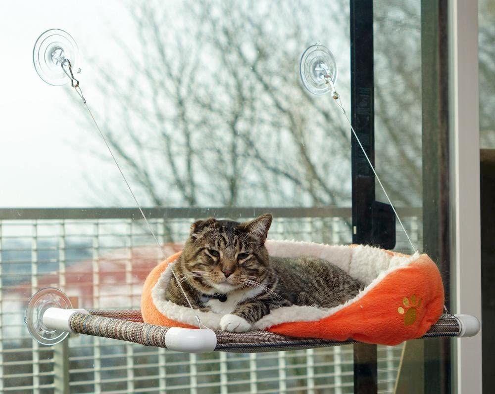 Kitty Cot Cat Perch