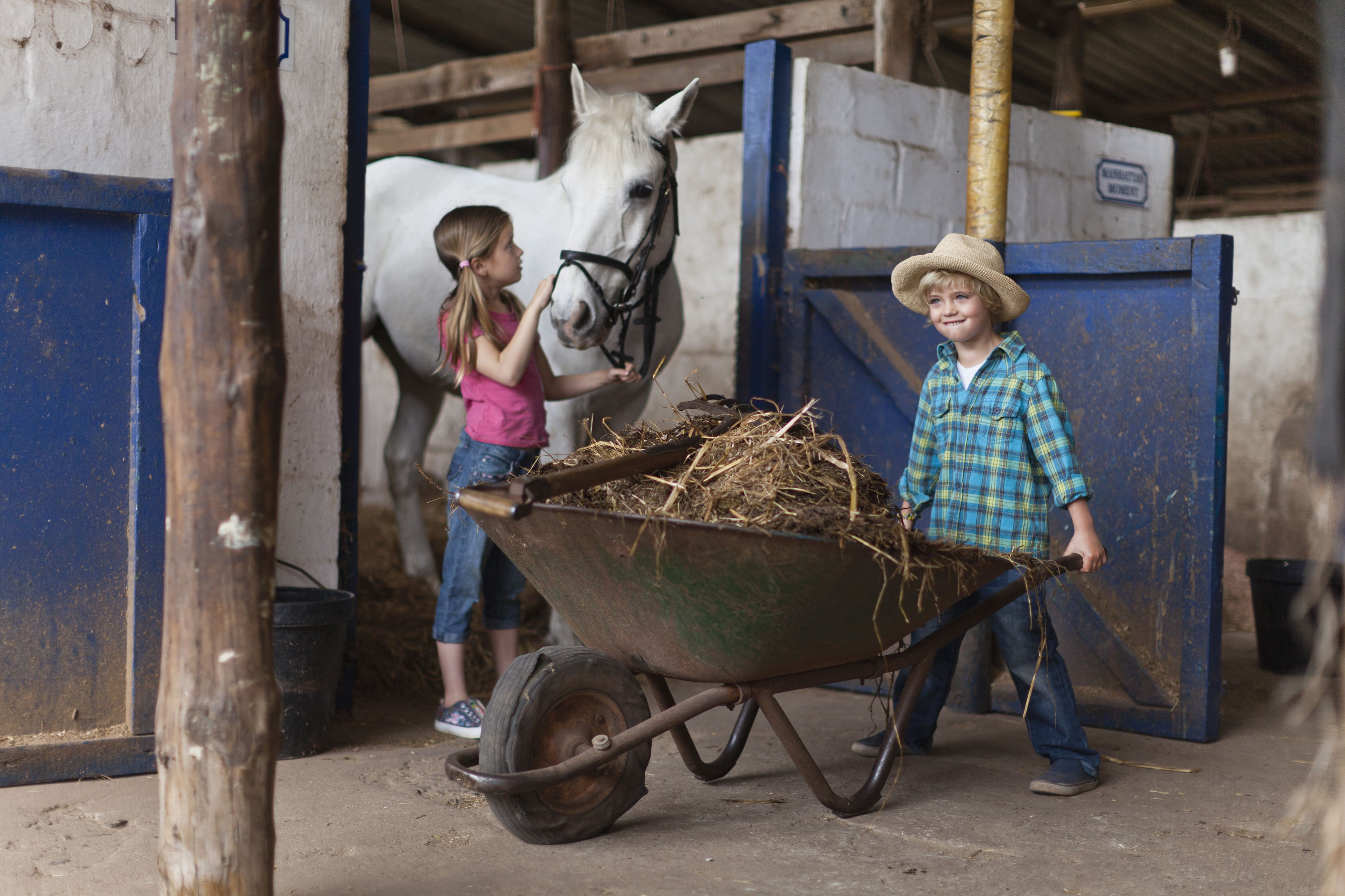 Children working in a horse stable
