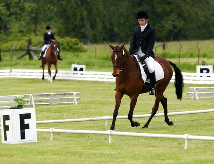A dressage horse and rider actively competing