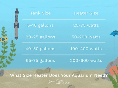 How Size Affects an Aquarium's Weight