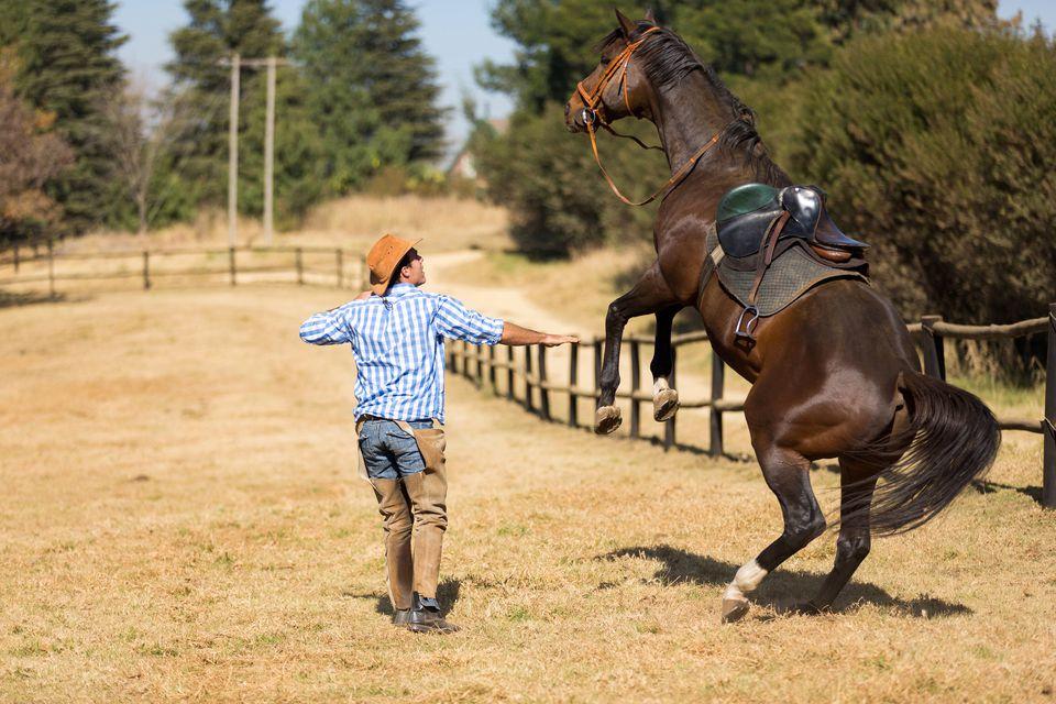 cowboy taming a loosing racing horse