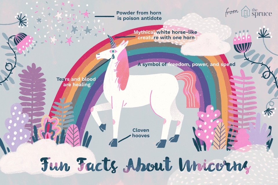illustration of unicorn facts