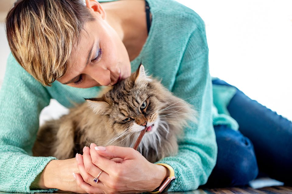 Adult Woman Kissing Her Siberian Cat