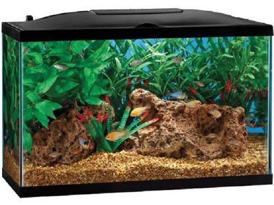 Diy Fish Tank Decoration Ideas
