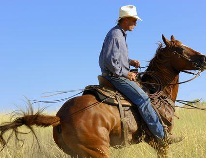 Cowboy riding a chestnut horse