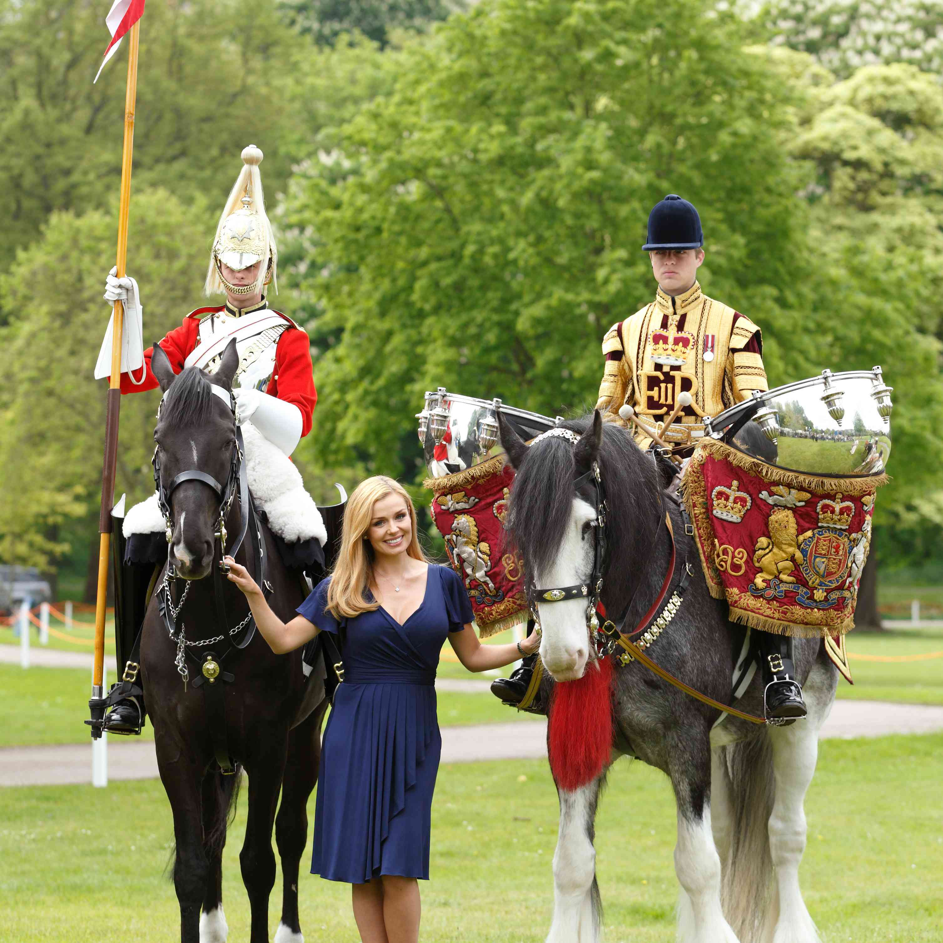 Bay Drum Horse and Queen's Cavalry horse posing after a procession