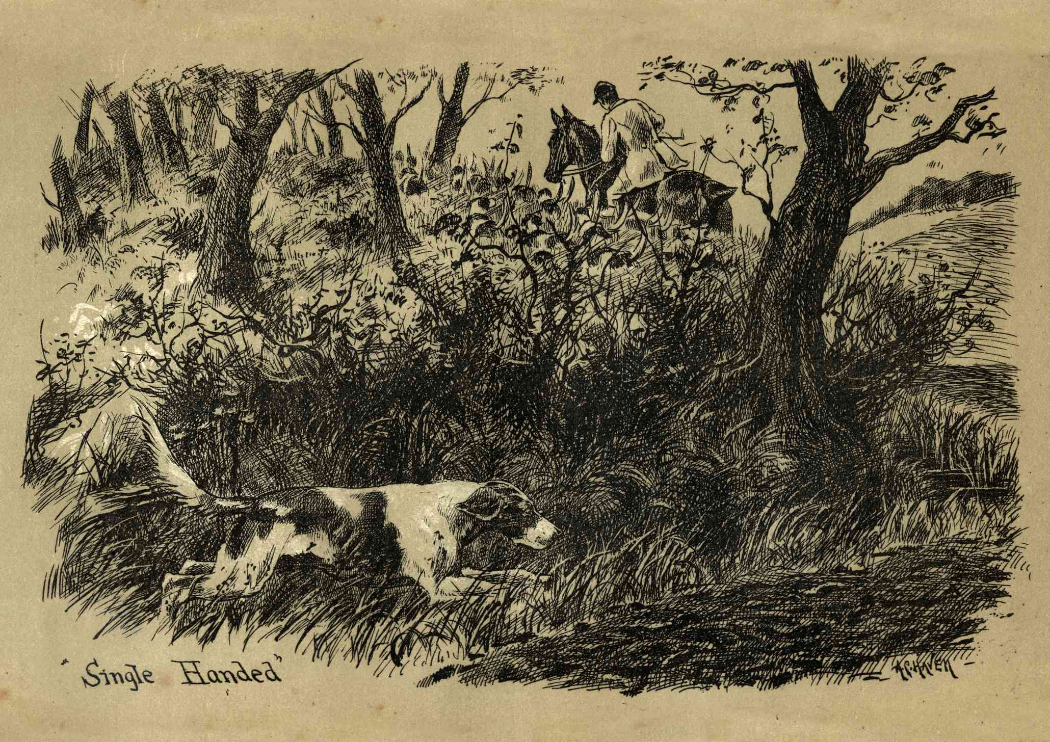 A historic image of a Foxhound hunting.