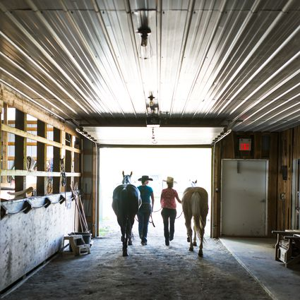 Cowgirls lead horses out of stable, rear view