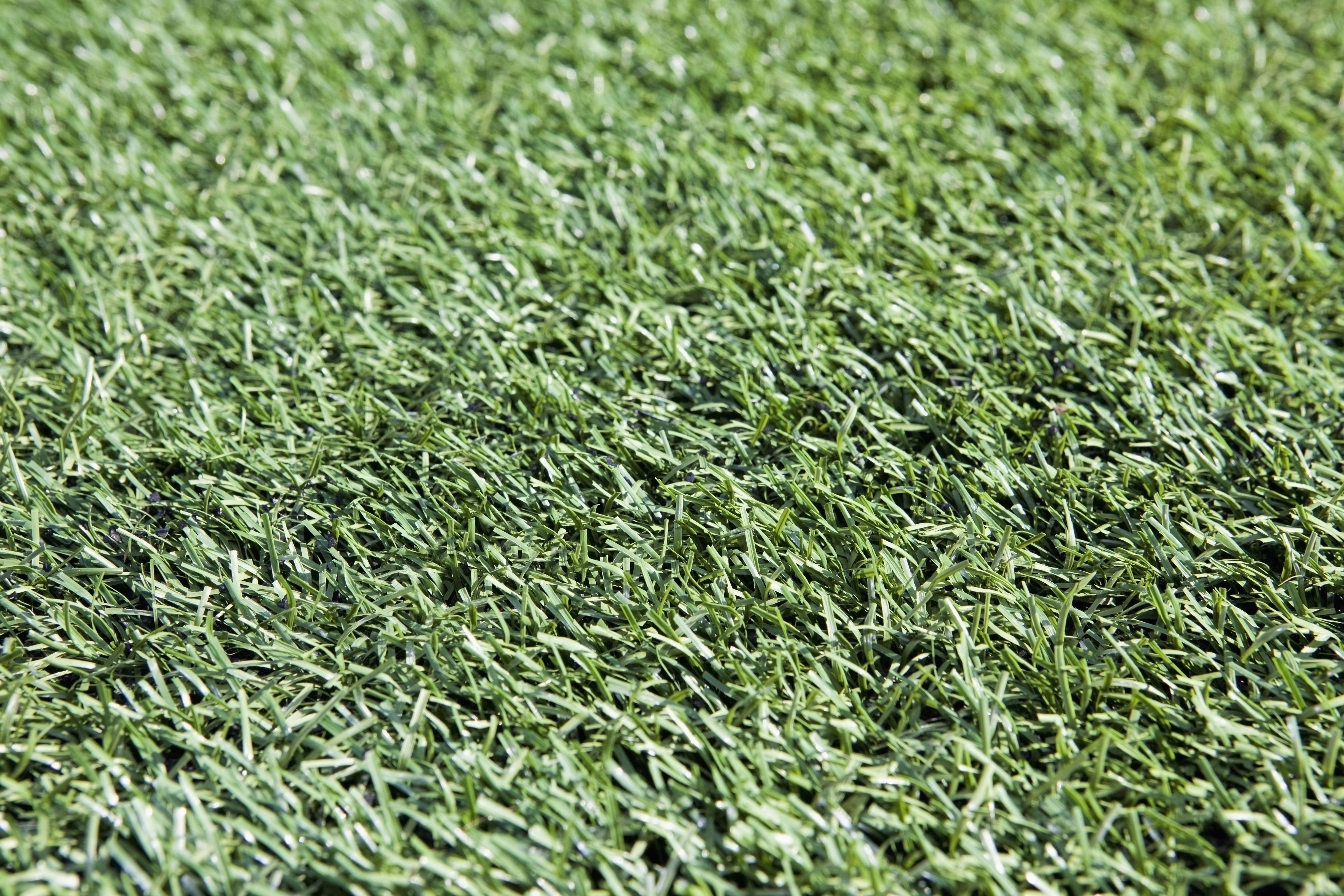 USA, Oregon, Tigard, full frame of artificial turf