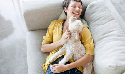 Young woman hugging dog on living room sofa