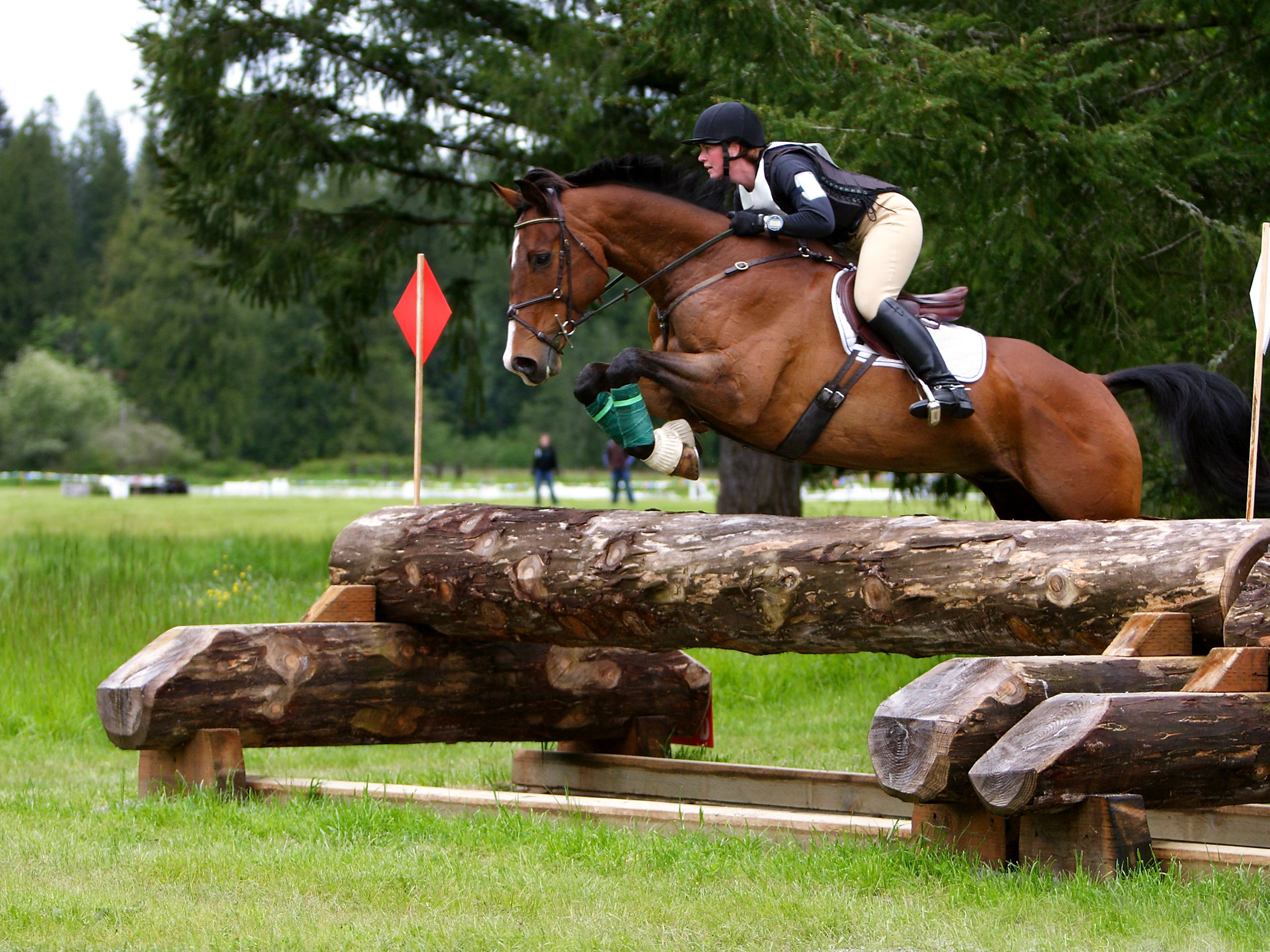 Cross Country Equestrian Jumping