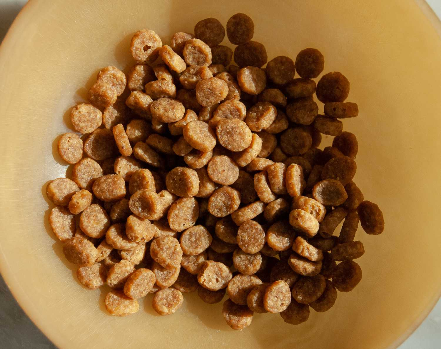 The 8 Best Premium Dry Foods for Cats in 2019