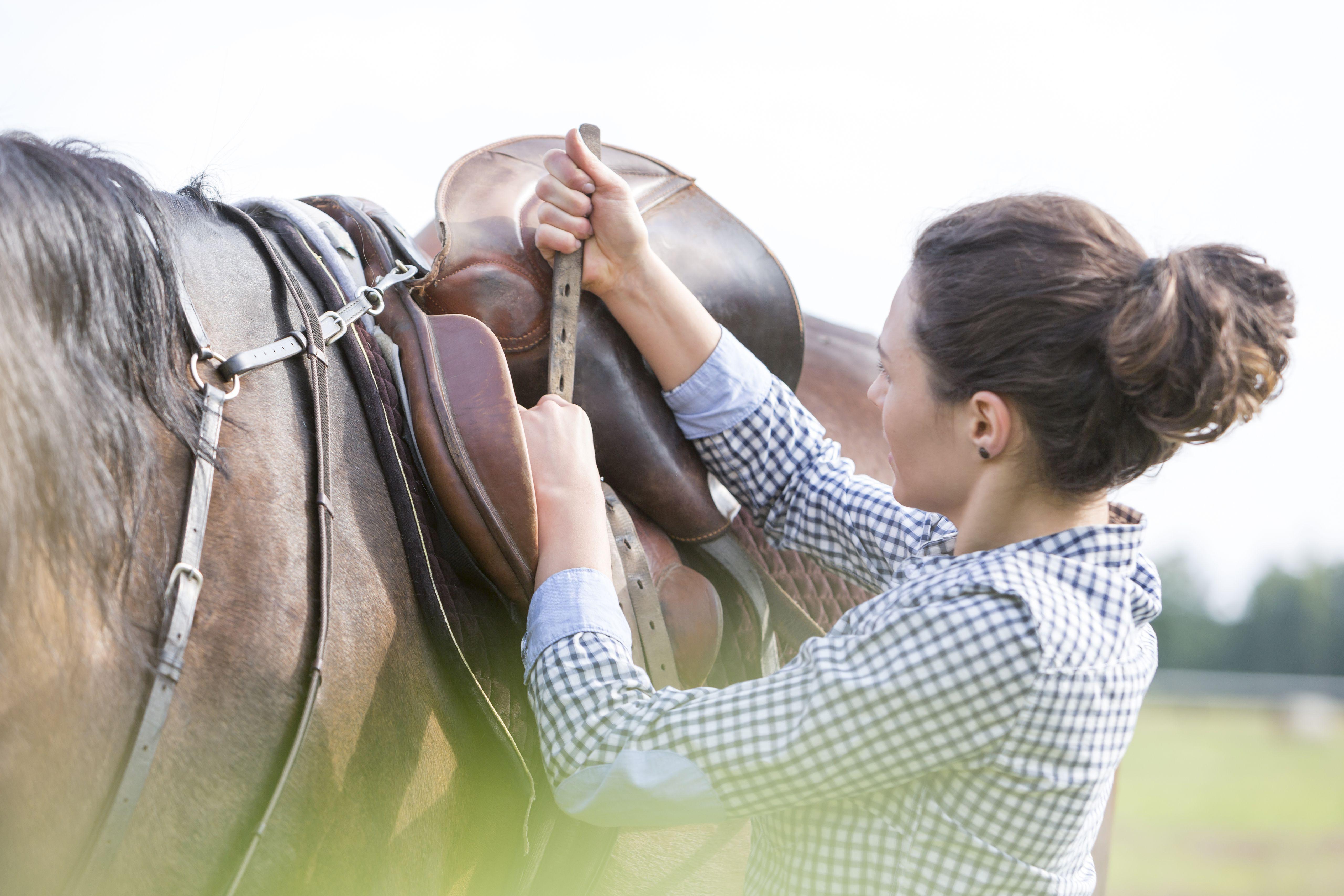 Mujer que aprieta la silla de montar para montar a caballo