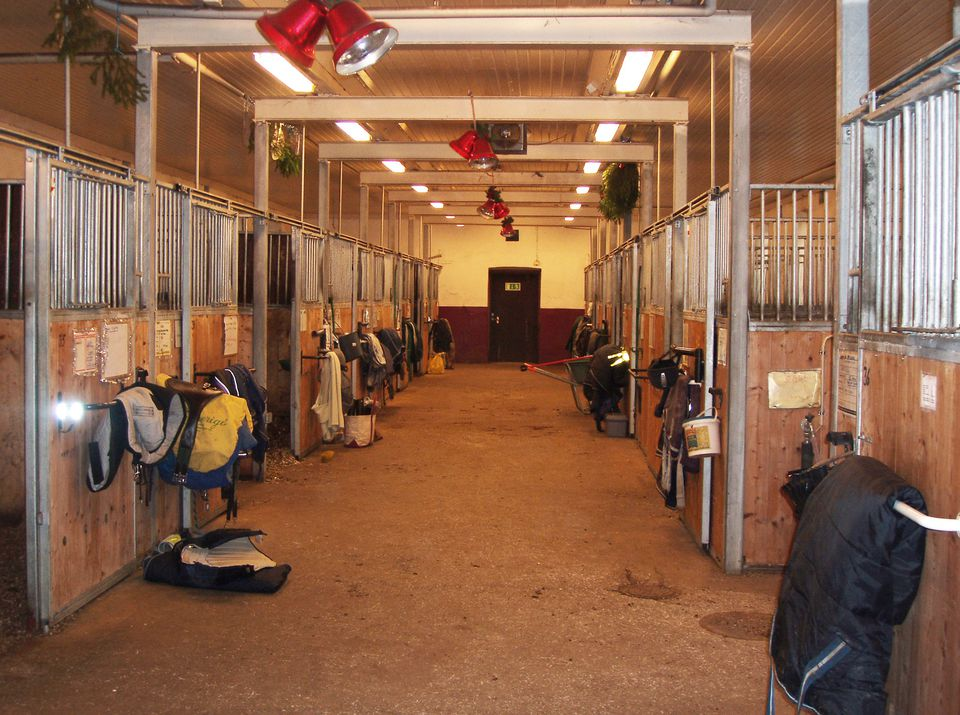 Inside of a stable showing aisle and tack outside of stalls.