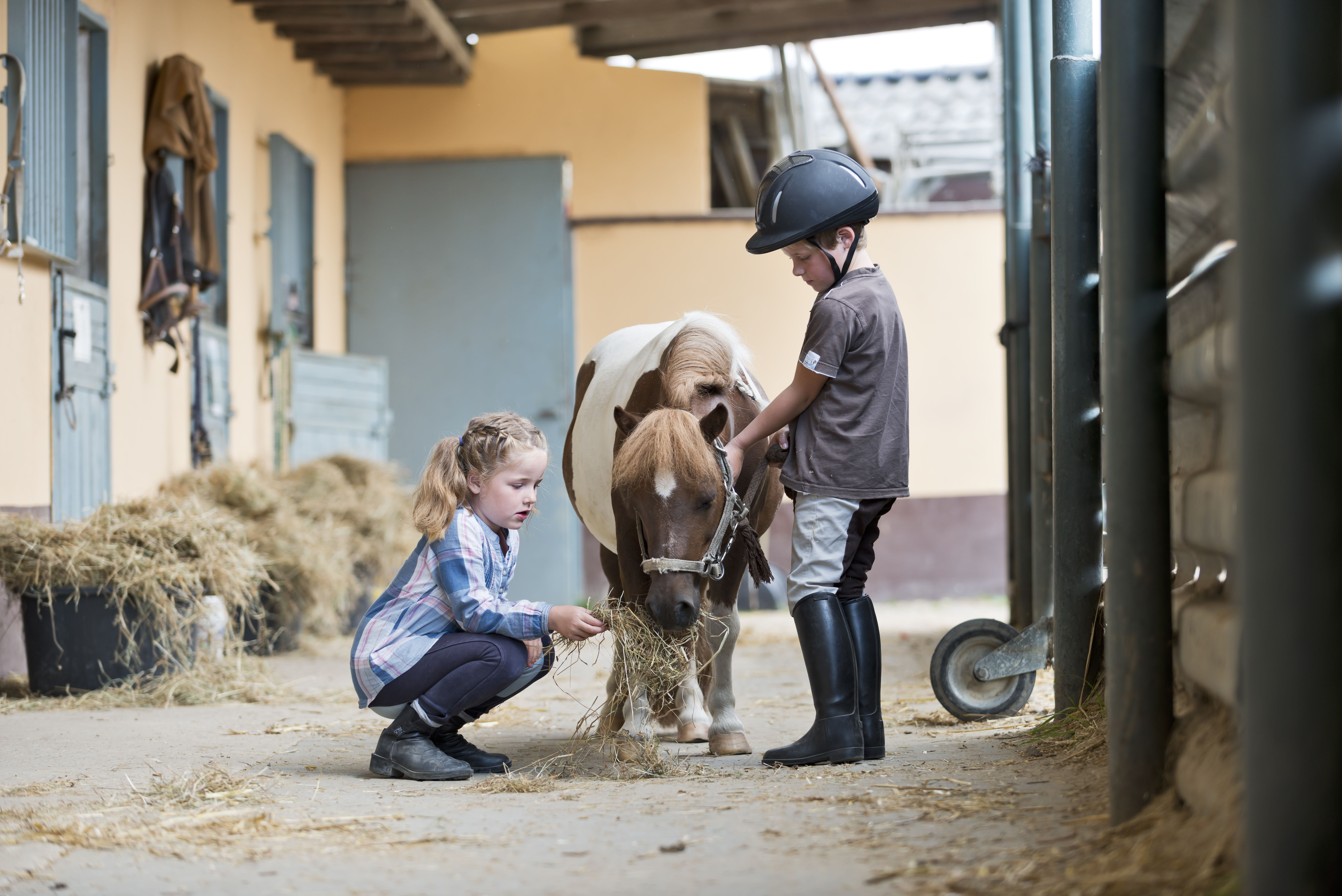 Boy and girl at riding stable with a Shetland pony