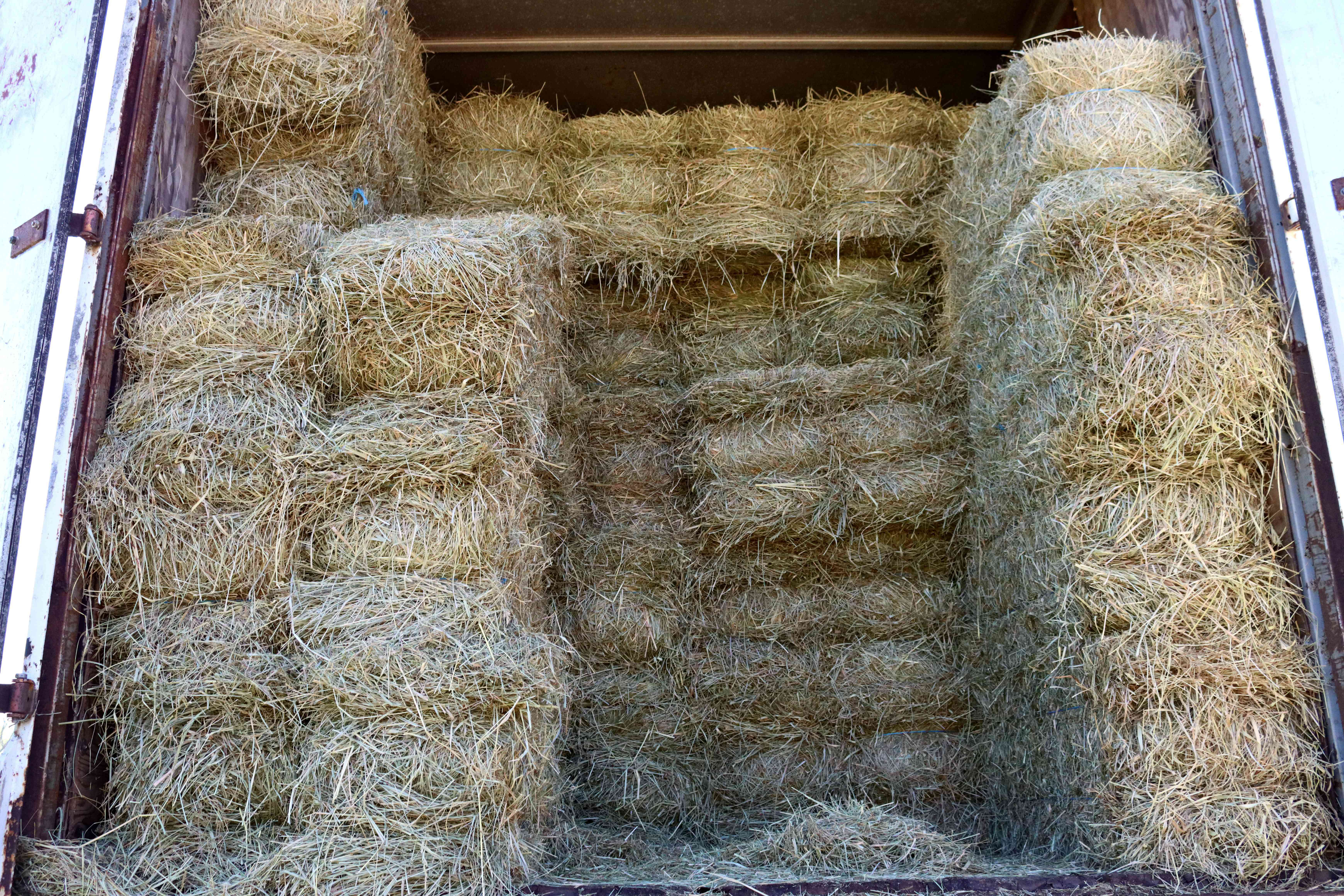 Bales of hay stacked on each other in barn