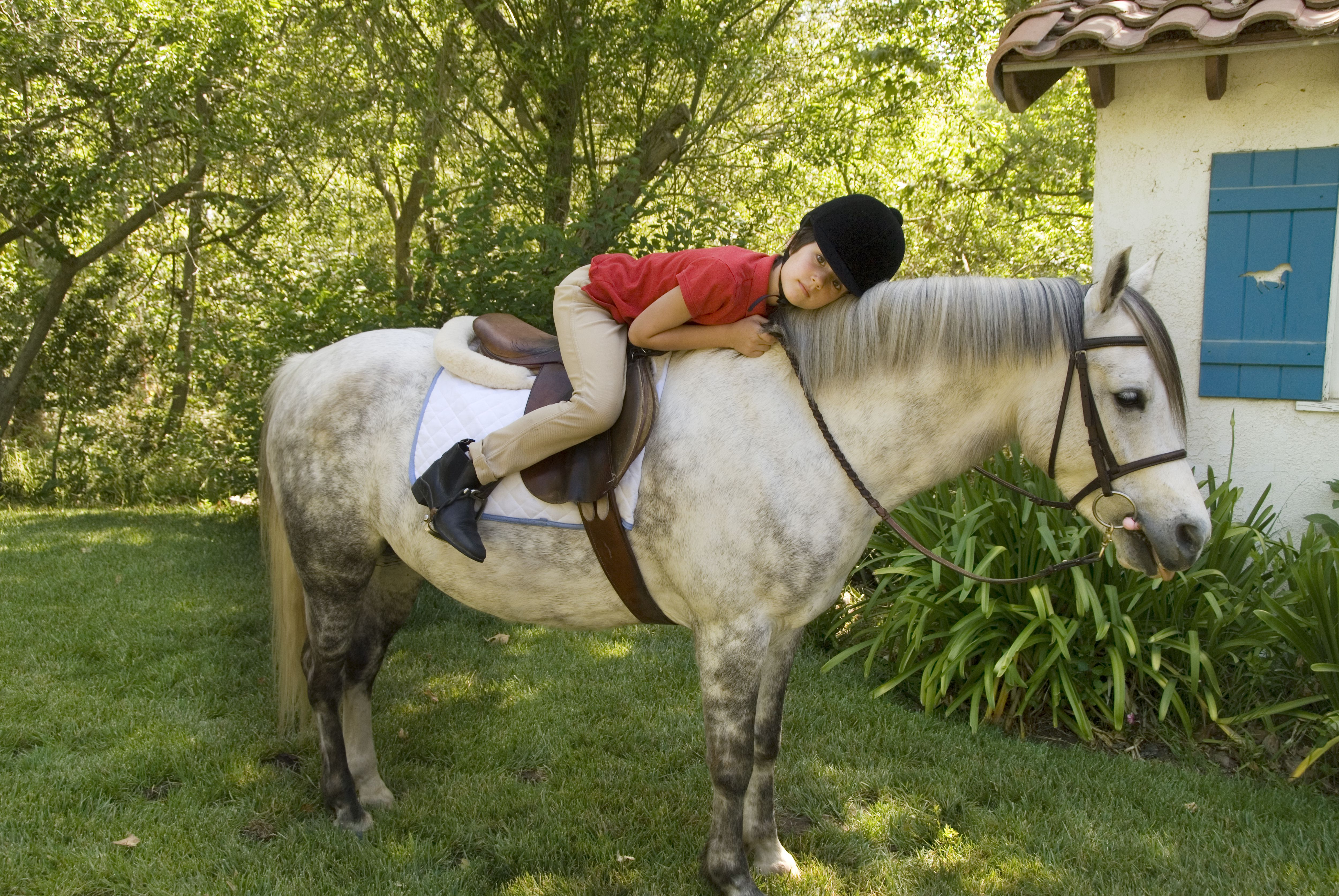 Child riding a Welsh pony