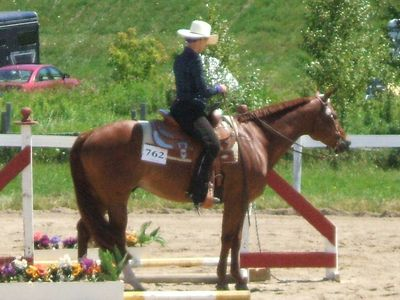 How to Train Your Horse's Mane to Lie Flat on One Side