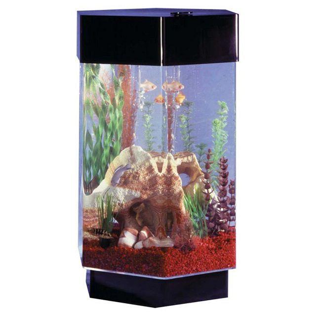 Midwest Tropical Hexagon Aquascape Aquarium